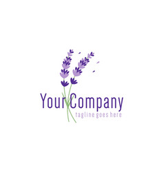 Lavender flowers for logo design concept editable vector