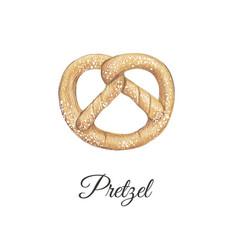 pretzel hand drawing vector image