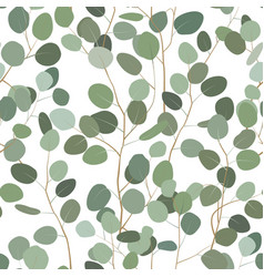Seamless pattern with eucalyptus hand painted vector