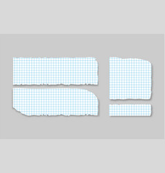 set various gray squared torn note papers with vector image