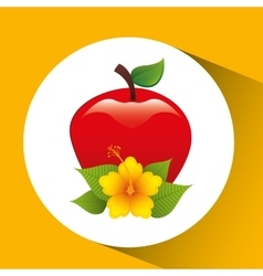 tasty red apple and flower leaf vector image