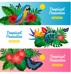 tropical horizontal banner set vector image vector image