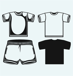 Swimming trunks and t-shirt vector
