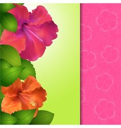 Hibiscus flower panel border vector image vector image