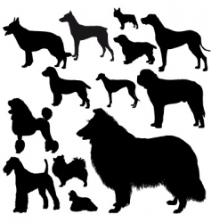 Dogs silhouettes vector