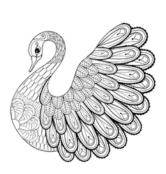 Hand drawing artistic Swan for adult coloring vector image