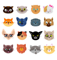 Heads of cute cat characters with different vector
