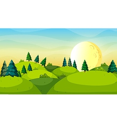 Pine trees above the hills vector