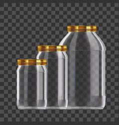 realistic empty 3l glass jar set isolated on vector image