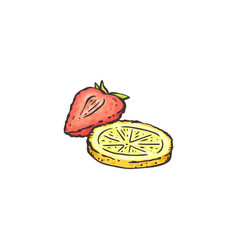 strawberry and lemon slice drawing isolated on vector image