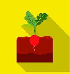 radish icon flat single plant icon from the big vector image vector image