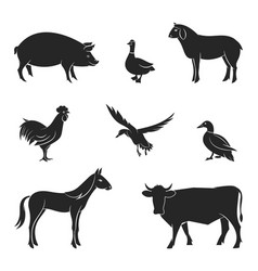 silhouettes of livestock vector image vector image