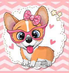 Cute corgi dog girl in pink eyeglasses vector
