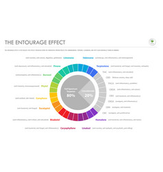 Entourage effect proportion horizontal vector