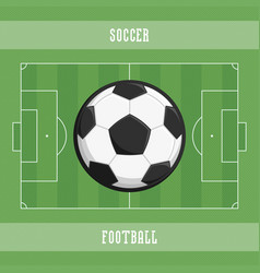 soccer ball and field vector image