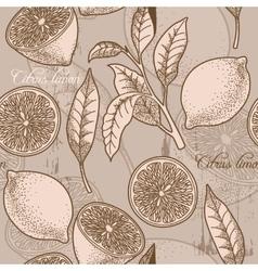 Vintage lemon seamless background vector