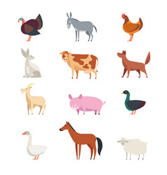 cartoon farm animals and birds set isolated vector image