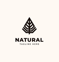 creative professional trendy leaf logo design vector image