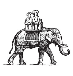 girls riding an elephant vintage vector image