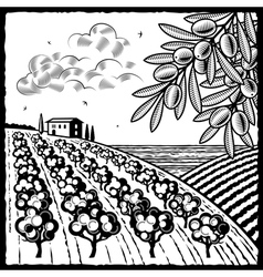 Landscape with olive grove black and white vector image