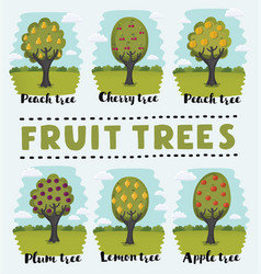 Set of fruit orchard trees vector