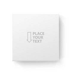 white box frame for logo or text vector image