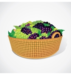 Ripe Sweet Grapes in Woven Basket vector image vector image
