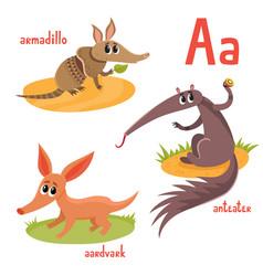 Cartoon of exotic wild animals vector
