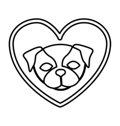 Cute dog pet vector image