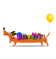 Dachshund in birthday hat with baloon on tail vector