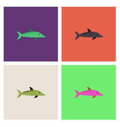 dolphin delphinus delphis collection vector image