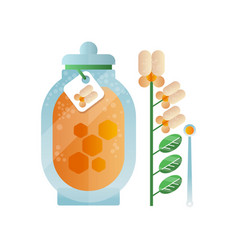 glass jar of honey and melilot flower natural vector image