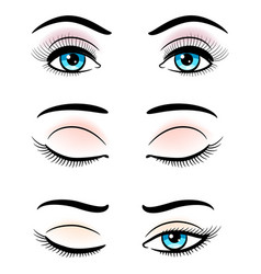 Open and closed blue female eyes vector