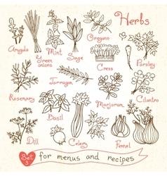 Set drawings herbs for design menus recipes vector