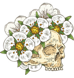 Voodoo skull in white flower wreath vector