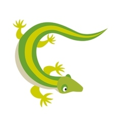 Green water dragon lizard nature animal reptile vector image