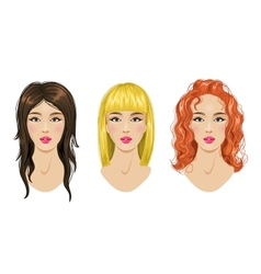 Hairstyles set blonde brunette red-haired woman vector image