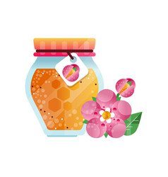 glass jar of honey and pink flower natural herbal vector image