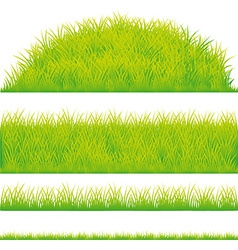 Green grass design element vector