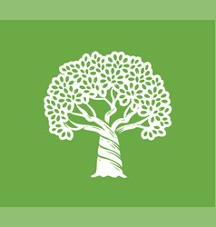 growing big tree with leaves symbol nature vector image