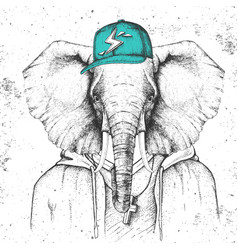 Hipster animal elephant dressed in cap vector