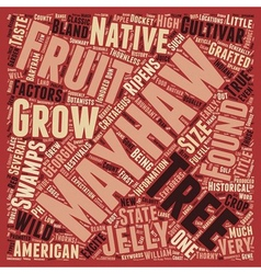 History Of The Mayhaw text background wordcloud vector image