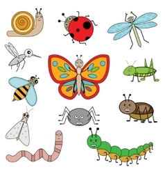 Insects in cartoon style vector