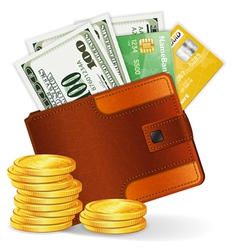 leather wallet with dollars vector image
