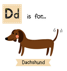 Letter d tracing side view dachshund vector