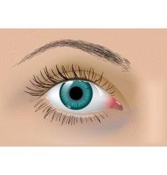 Perfect eye vector