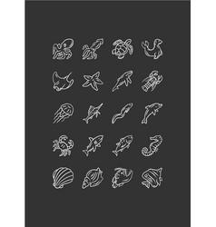 sea animals chalk icons set turtle jellyfish vector image