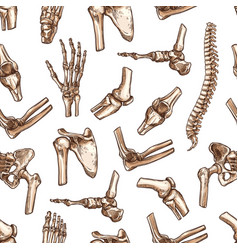seamless pattern human body bones sketch vector image