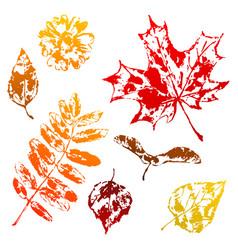 Set of printed leaves vector