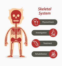 Skeletal system and medical line icon vector